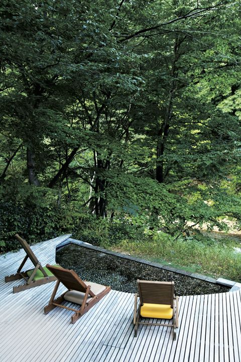 別邸 仙寿庵 自然林の庭園