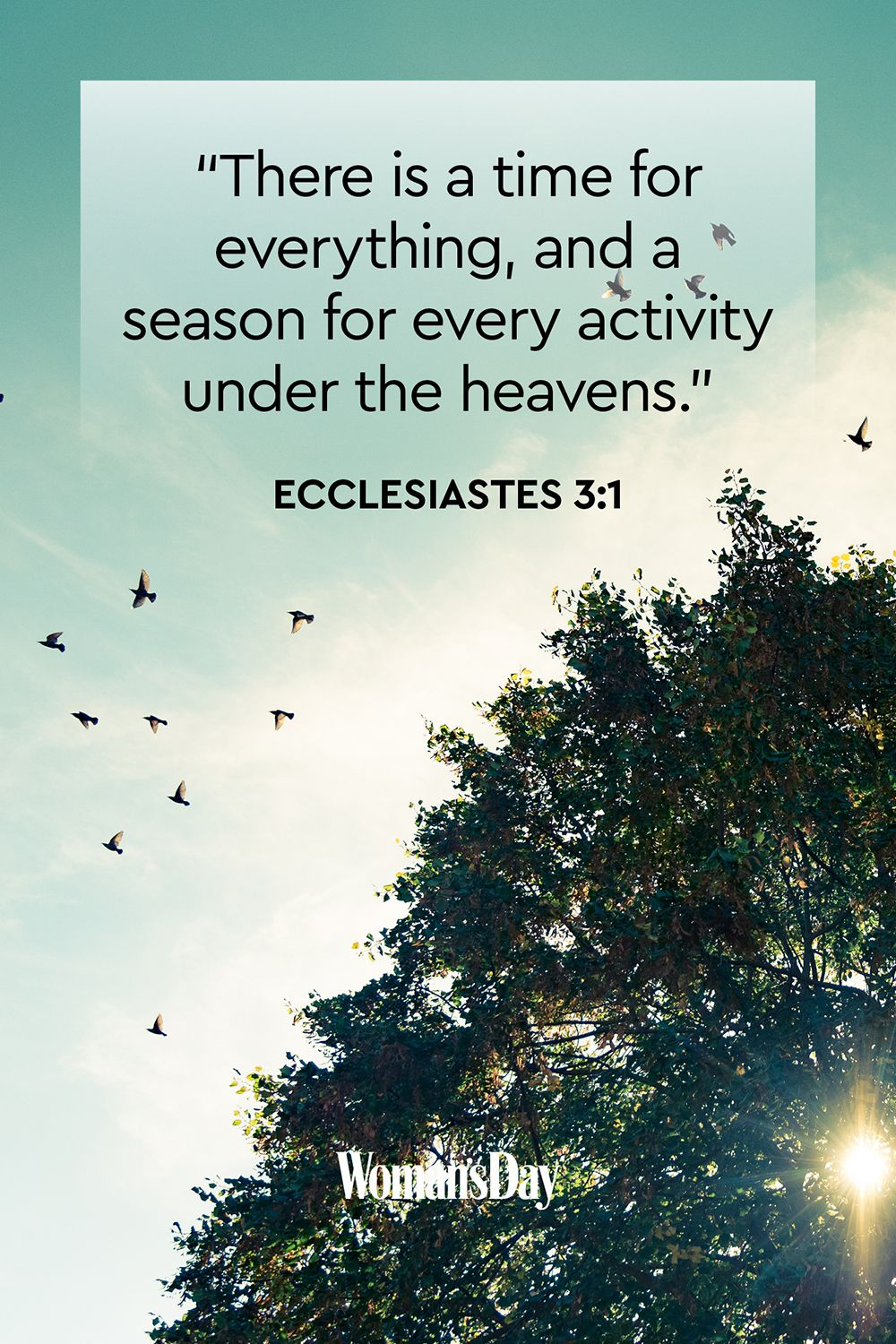 bible quotes about life bible verses about life