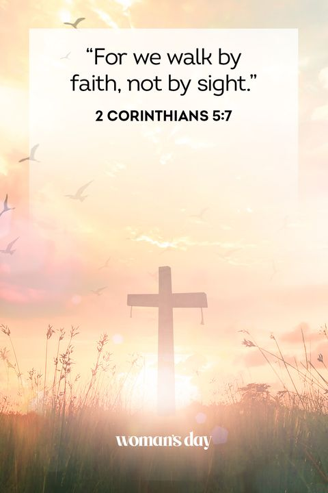 41 Bible Quotes Bible Scripture Verses Of The Day