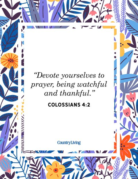 devote yourselves to prayer, being watchful and thankful colossians 4 2