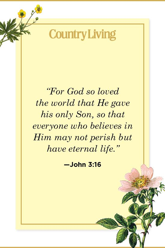 Featured image of post Uplifting Biblical Quotes About Life Scripture frequently mentions meditation and meditating on the teachings and laws of god