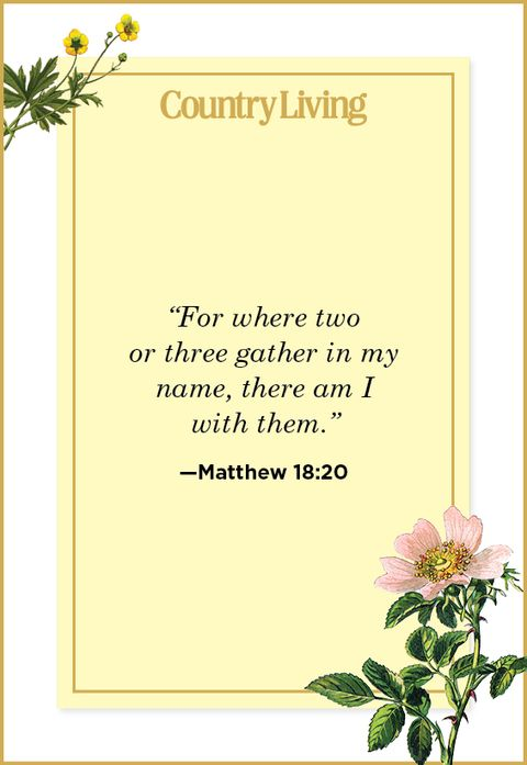 20 Bible Verses About Family Scripture For Solving Family Conflict