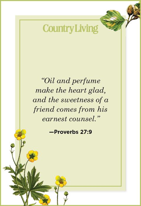 Quote from Proverbs 27:9