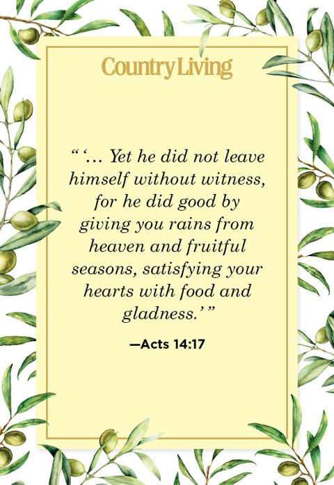 kindness quote from acts 1417