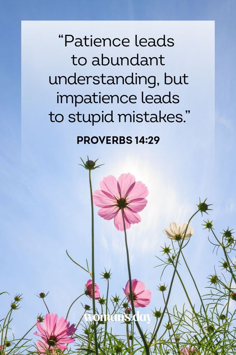23 Powerful Bible Verses About Patience — Calming Scripture on Patience