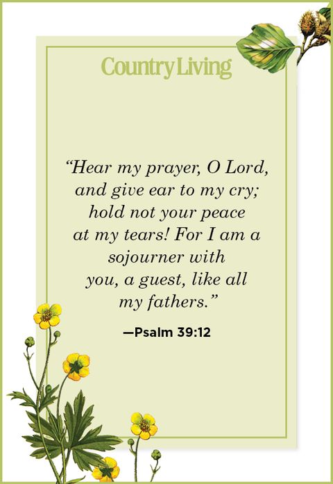 Quote from Psalm 39:12