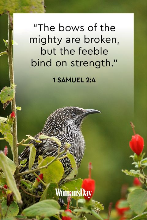 bible-verses-about-strength