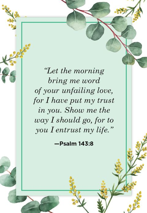 Your scripture wife love What Does