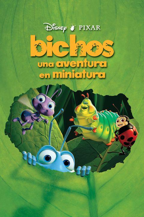 bichos poster