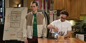 The Big Bang Theory Sheldon Leonard