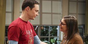 Big Bang Theory final explicado