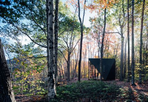 capanna-moderna-bosco