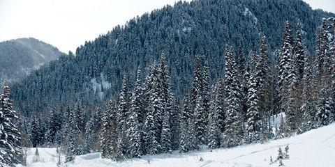 Big Cottonwood Canyon, Utah