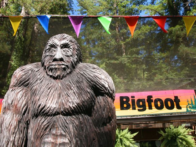 bigfoot sightings is bigfoot real