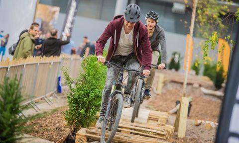 Bicycle, Vehicle, Cycling, Mountain bike, Cycle sport, Recreation, Urban area, Downhill mountain biking, Sports equipment, Tree,