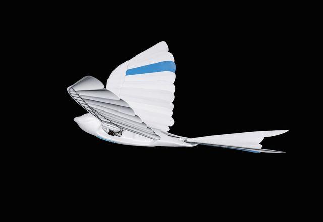 a bionic flying bird