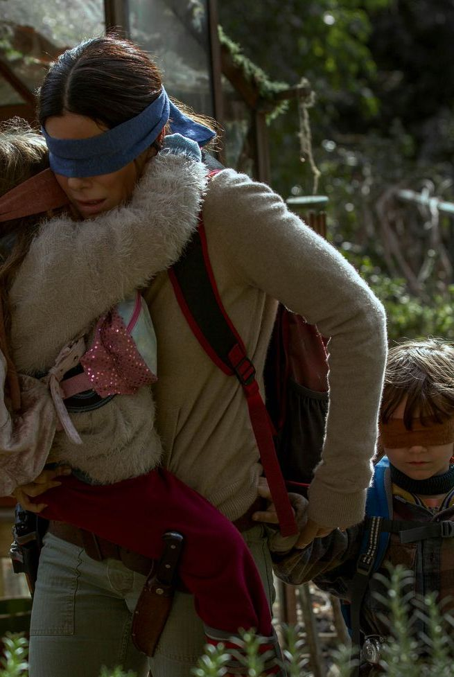 23 Questions About Bird Box 23 Questions I Have About Netflix S