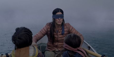 20 Bird Box Questions That Need Answers