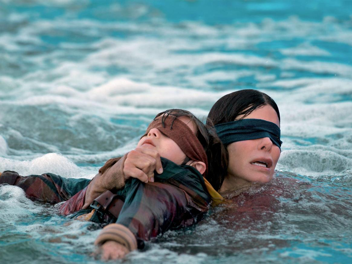 Bird Box Almost Had A Much Darker Ending That Was In The Book
