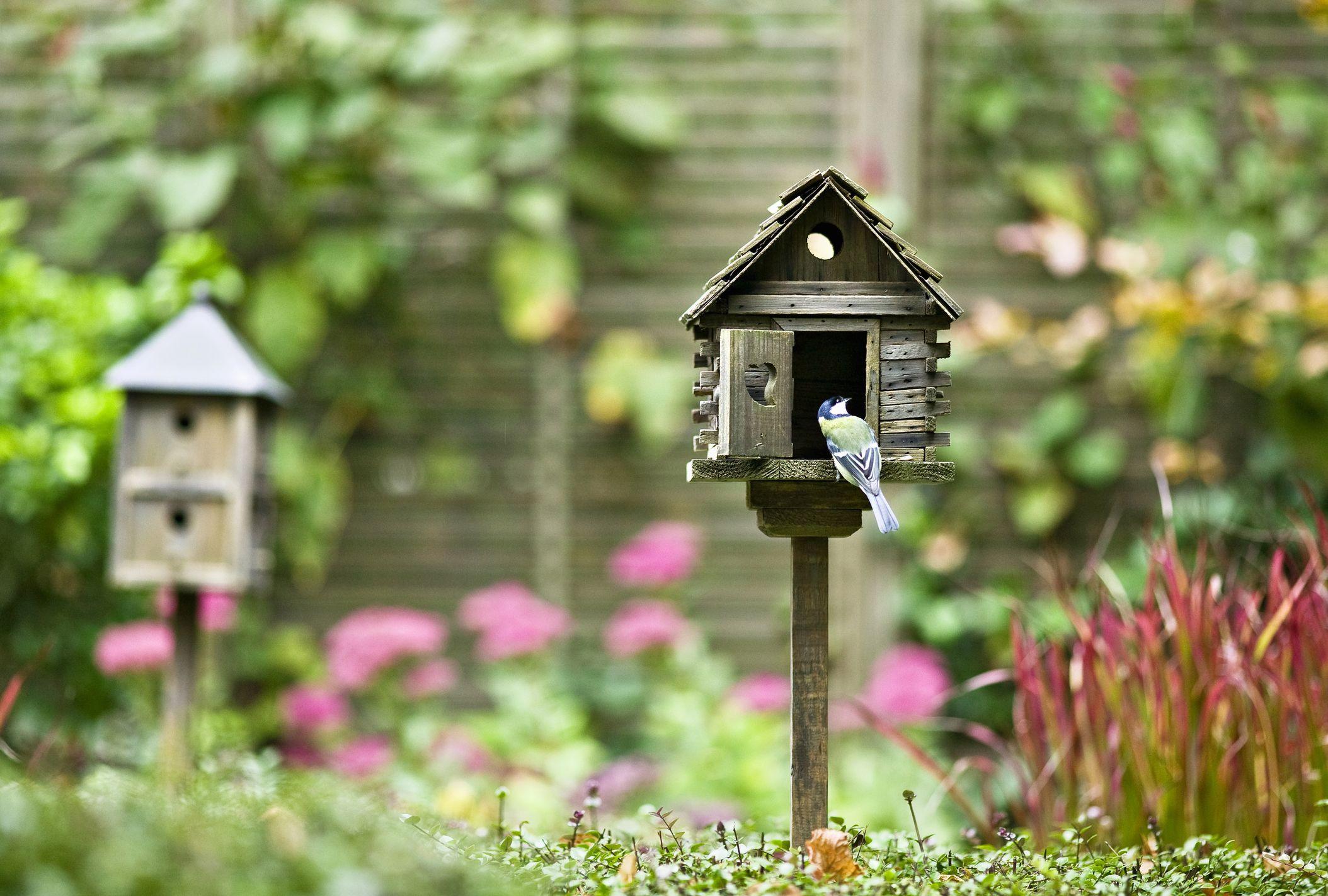 recycled wild floral vintage yellow garden decor feeder lover teacup gifts pin hanging birdfeeder bird