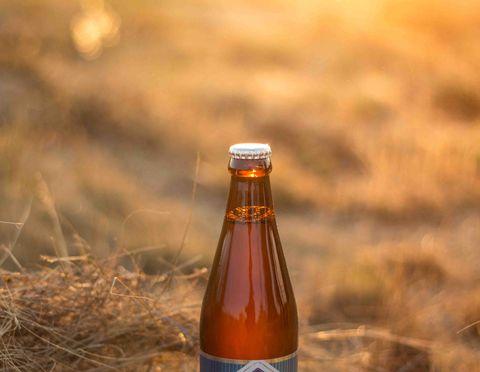 Bottle, Glass bottle, Beer bottle, Drink, Alcoholic beverage, Wine bottle, Beer, Alcohol,