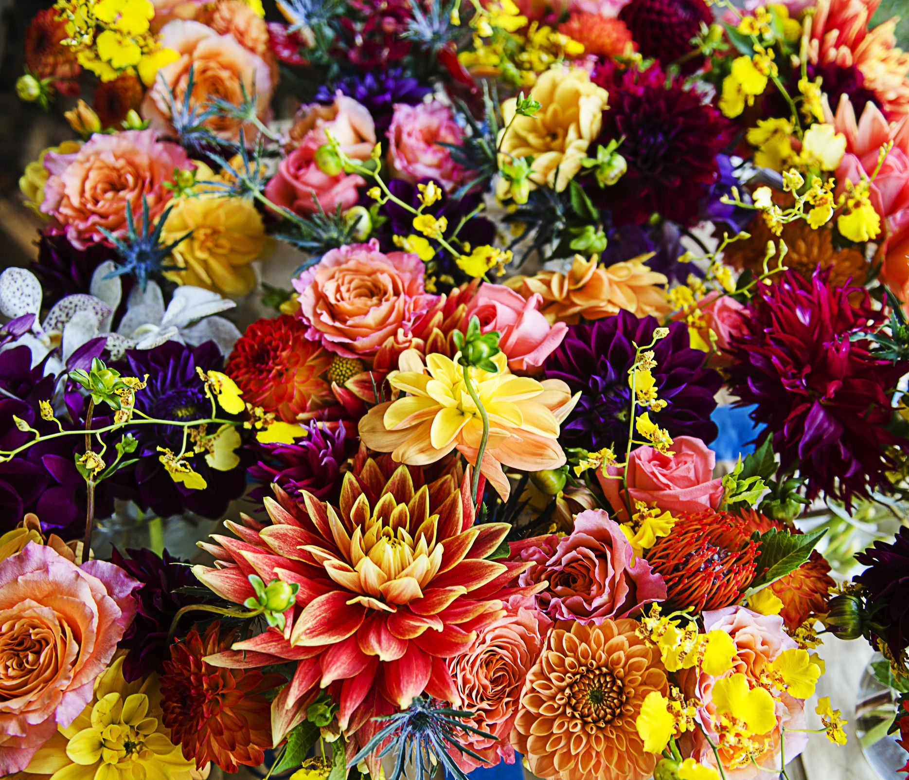 What Your Birth Flower Says About You The Birth Flower For Each Month Of The Year