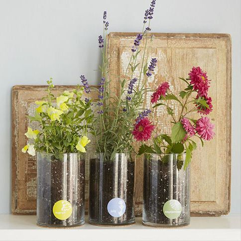 birthday gifts for her flowers art
