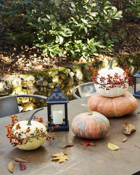 bittersweet wrapped pumpkin diy halloween decoration
