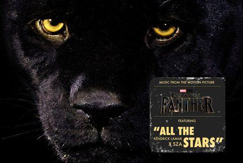 Felidae, Black, Big cats, Carnivore, Jaguar, Snout, Wildlife, Whiskers, Photo caption, Black cat,
