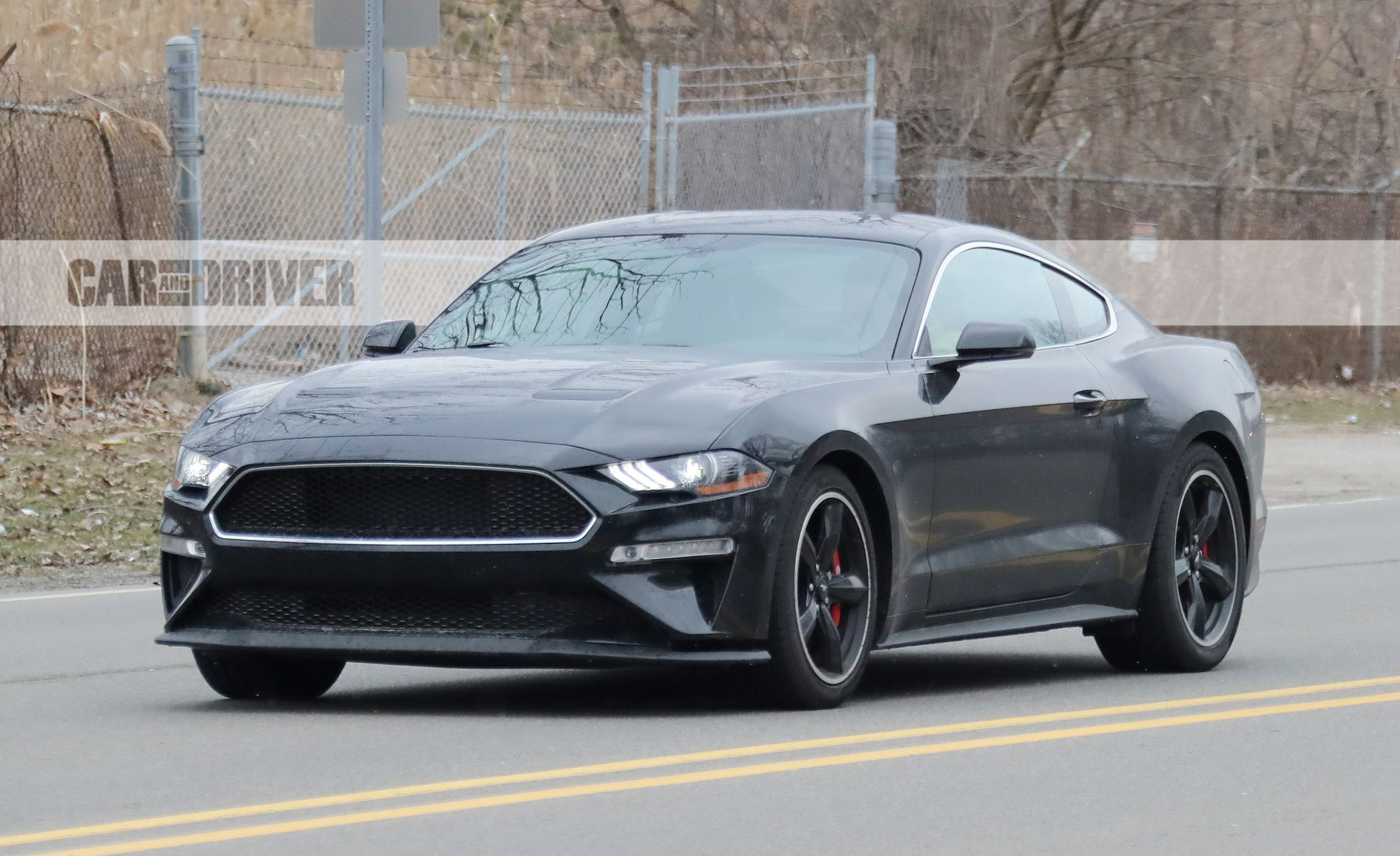 2019 ford mustang spotted in shadow black news car and driver