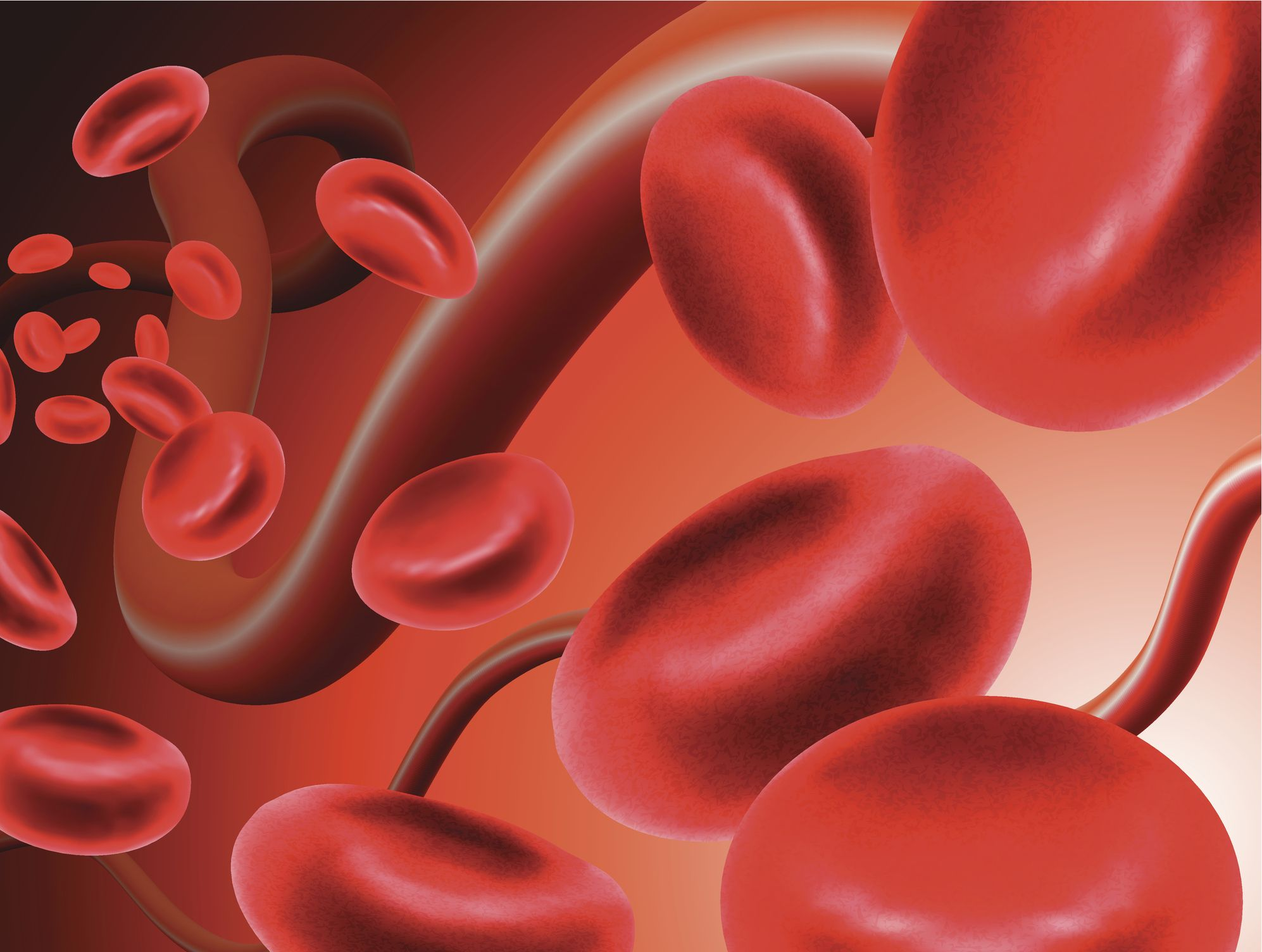 Blood Type Diet Can Eating For Your Blood Type Help Weight Loss