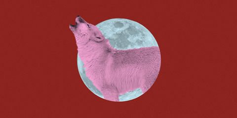 94be29542 How the Super Blood Wolf Full Moon Lunar Eclipse on January 21 Will Effect  Your Sign