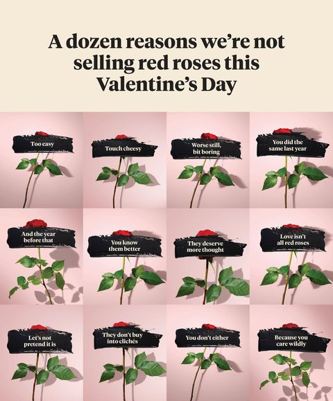 bloom  wild valentine's day campaign