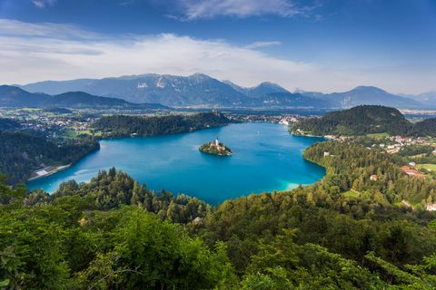 blue lake surrounded by forest in slovenia