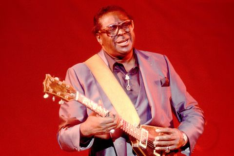 Albert King Performs Onstage