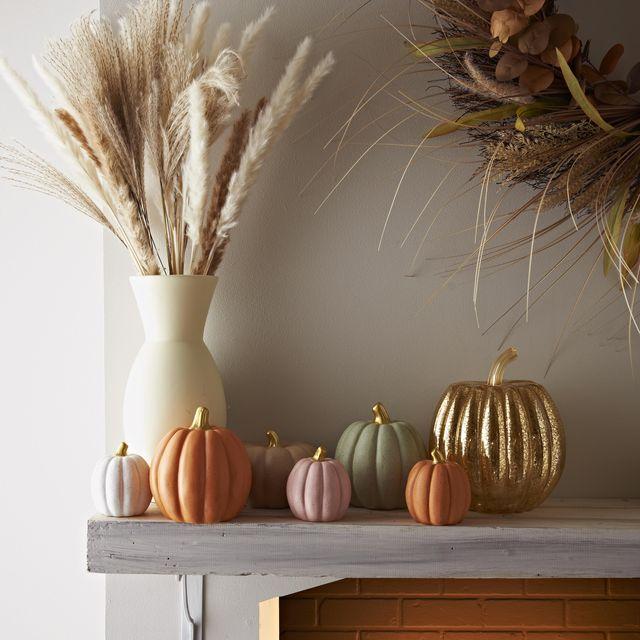 bm launches stylish pastel pumpkins