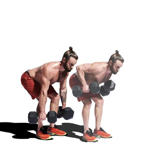 Weights, Exercise equipment, Kettlebell, Dumbbell, Arm, Bodybuilding, Muscle, Standing, Chest, Physical fitness,