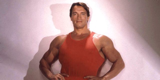 What Is Arnold Schwarzenegger S Net Worth How Much Arnold Schwarzenegger Is Worth