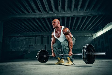 Body Builder Lifting Weights
