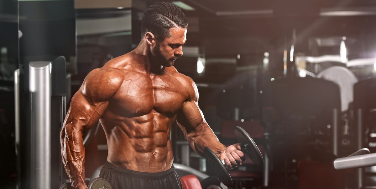 What Is Hypertrophy How Muscle Hypertrophy Helps Build Size-9671