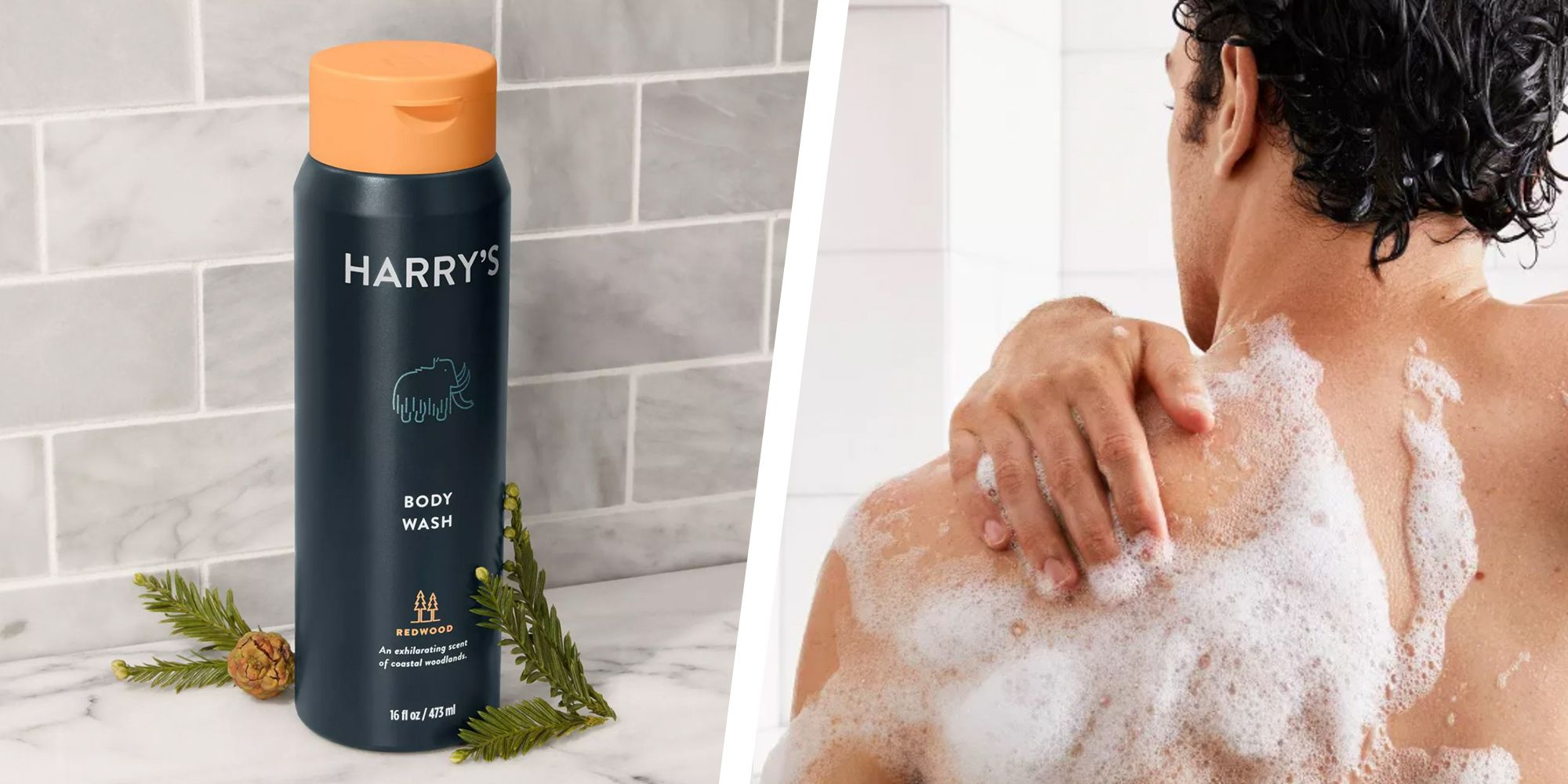 15 Best Body Washes For Men 2020