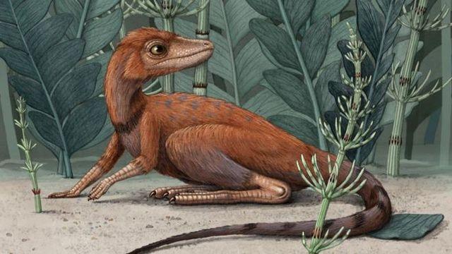 artist rendering of kongonaphon kely, a dinosaur and pterosaur ancestor