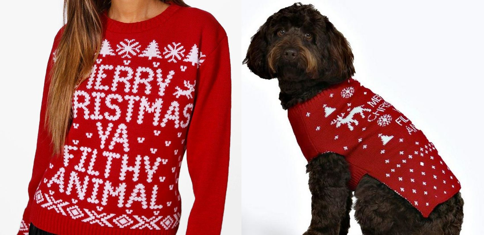 Matching Christmas Jumpers For You And Your Dog Now Exist