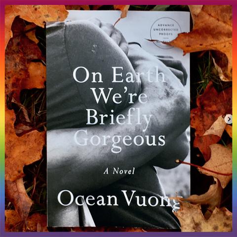 Leaf, Text, Font, Organism, Adaptation, Autumn, Photography, Stock photography, Plant, Photo caption,