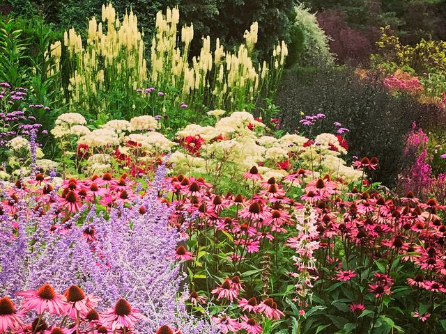 Expert Tips On How To Achieve Summer Garden Borders Best