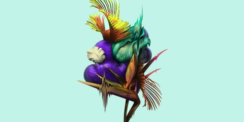 Feather, Graphic design, Illustration, Plant, Graphics, Art,