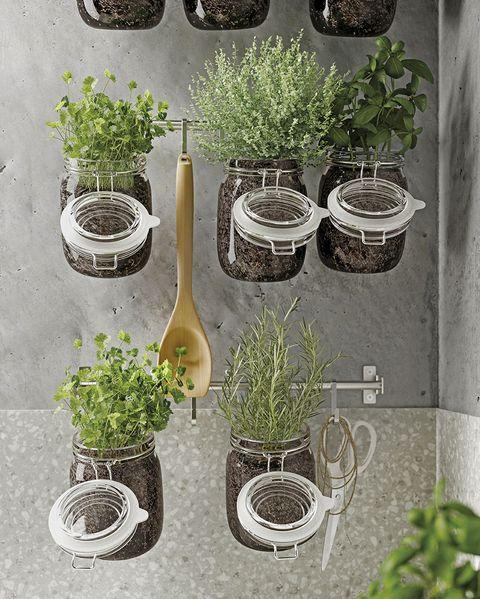 huerto vertical de hierbas aromáticas en botes