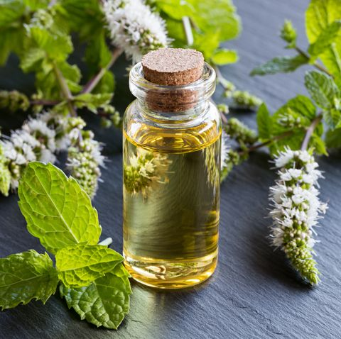 Image result for migraine headache oil