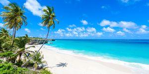 best january sales travel deals