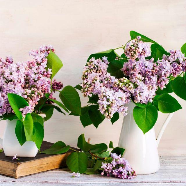 best vases